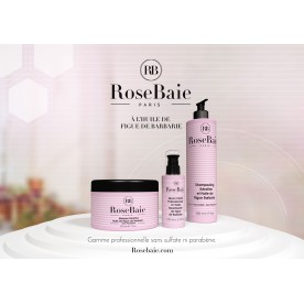 ROSE BAIE LOT DE 12